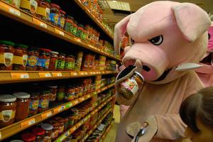 Свинья нюхает банку